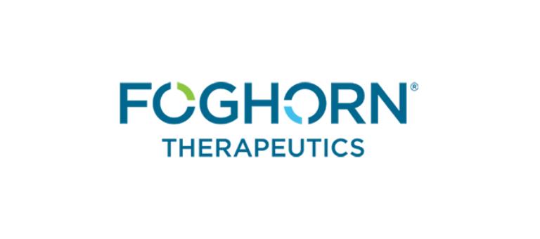 Foghorn Therapeutics IPO Raises $120 Million
