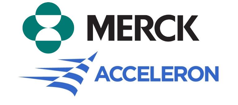 Merck to Acquire Acceleron for $11.5 Billion